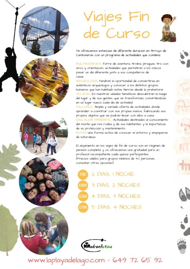 actividades (6)