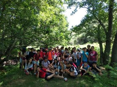 Bosque Sentidos 4