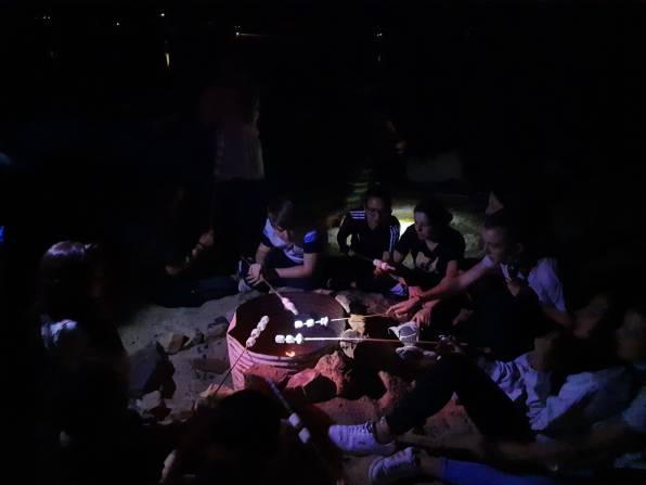 fuego de campamento (1)