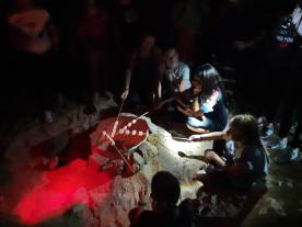 fuego de campamento (5)